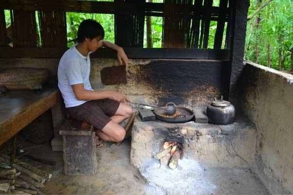 kopi-luwak-coffee-3